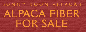 Alpaca Fiber for Sale